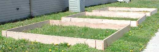 completed raised beds