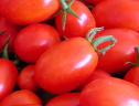 grape tomatoes - thumbnail